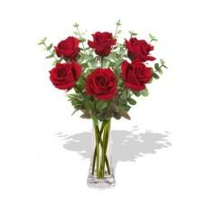 6 Long Stem Premium Roses Wrapped