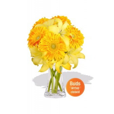 Gerbera and Asiatic Bouquet