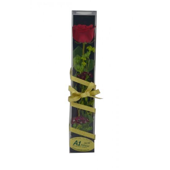 One Rose Box arrangement Valentines Day